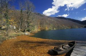 Tour To The National Park Biogradska Gora Packages